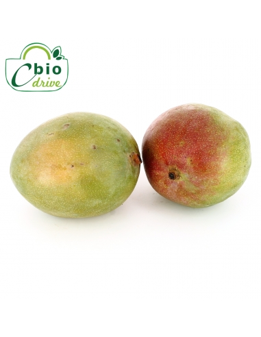 Mangue Kent Pérou - 500 g